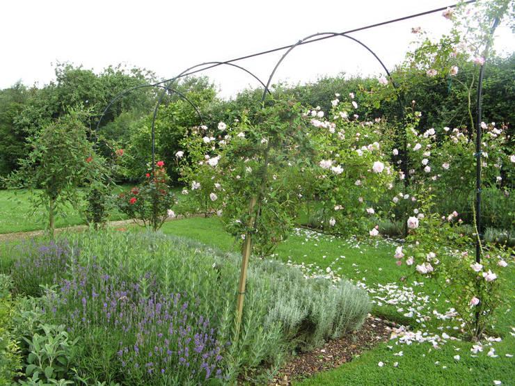 IJLA—Manor House:  Garden by IJLA