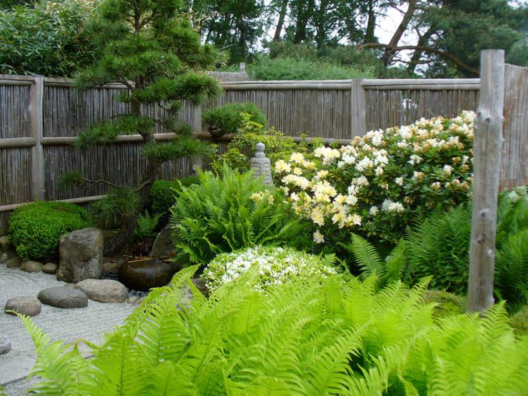 Vườn by ROJI Japanische Gärten