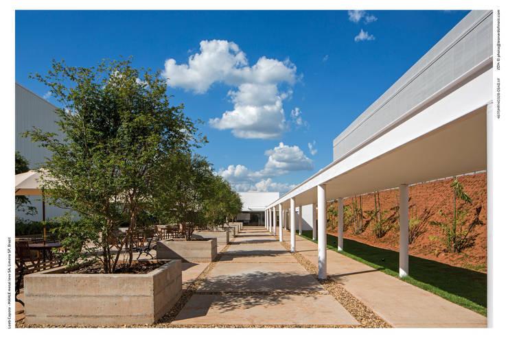 Centro de Distribuição – Mahle Metal Leve: Corredor, vestíbulo e escadas  por LoebCapote Arquitetura e Urbanismo