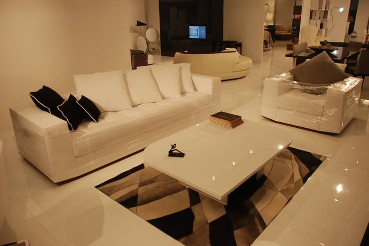 Gulsah Soyluer Designer/Sculptor – Suada for Milano Furniture & Interior Design Company:  tarz Oturma Odası