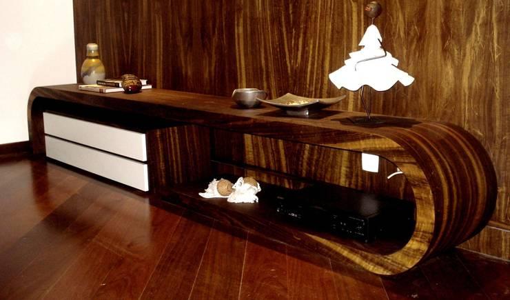 TV unit:  Living room by Carol Weston Architecture & Interiors