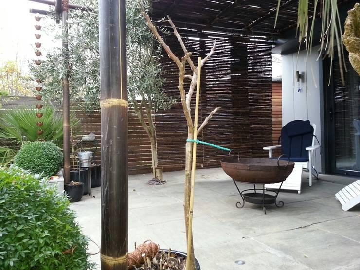 Tерраса в . Автор – Uk Bamboo Supplies Ltd