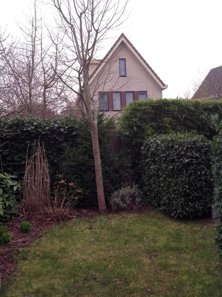 vergeten hoek in de tuin:   door alec bijlsma hoveniers