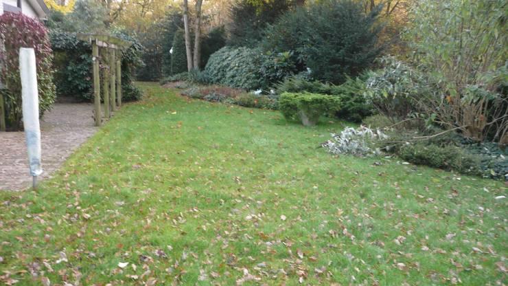 dit stuk tuin graag veranderen in zwembad:   door alec bijlsma hoveniers