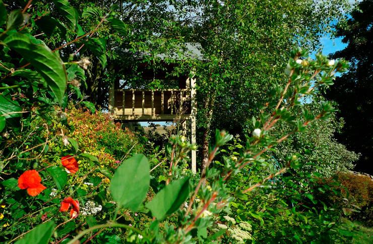 Treehouse:  Garden by wayne maxwell