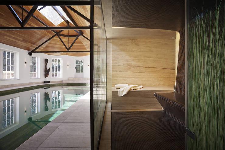Alessandro Isola Ltdが手掛けたプール, モダン