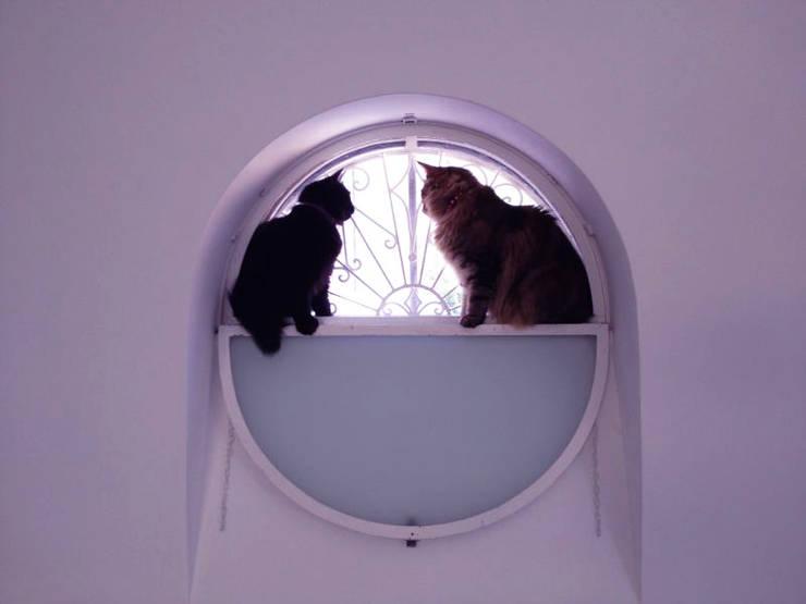 Projekty, śródziemnomorskie Okna i drzwi zaprojektowane przez Durango Studio di architettura e paesaggio