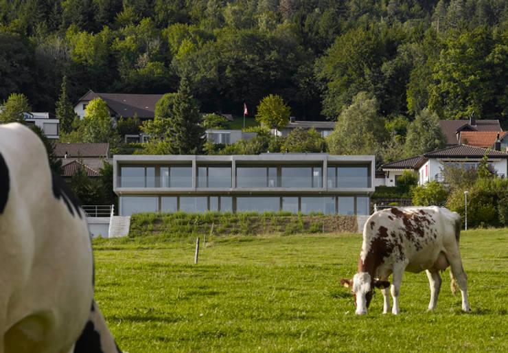 Doppelvilla am Jurasüdfuss: minimalistische Häuser von ern+ heinzl Architekten