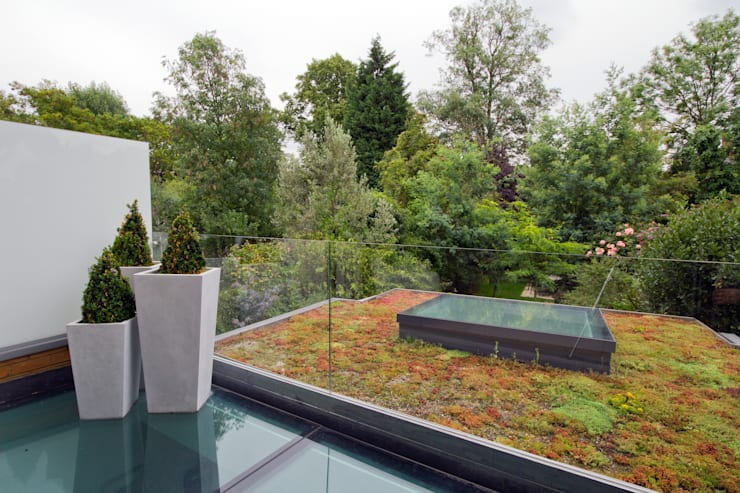 Green roof:  Houses by DDWH Architects