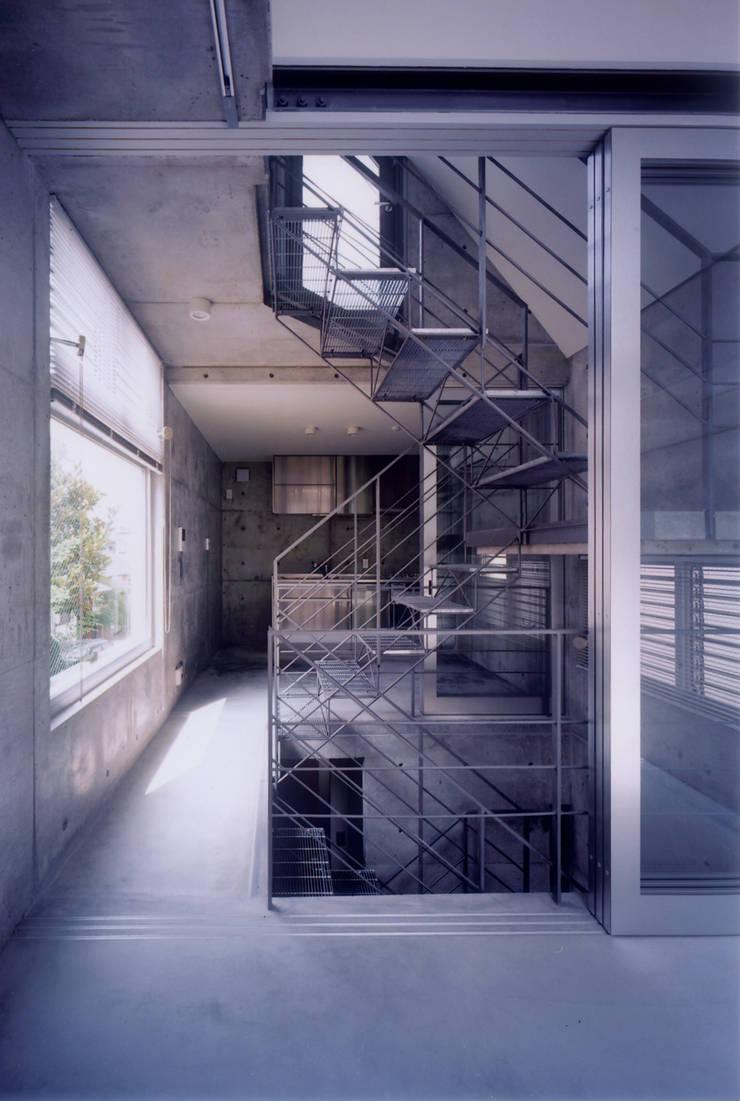 わずか12坪の敷地に建つコンクリートの家: スタジオ4設計が手掛けたダイニングです。