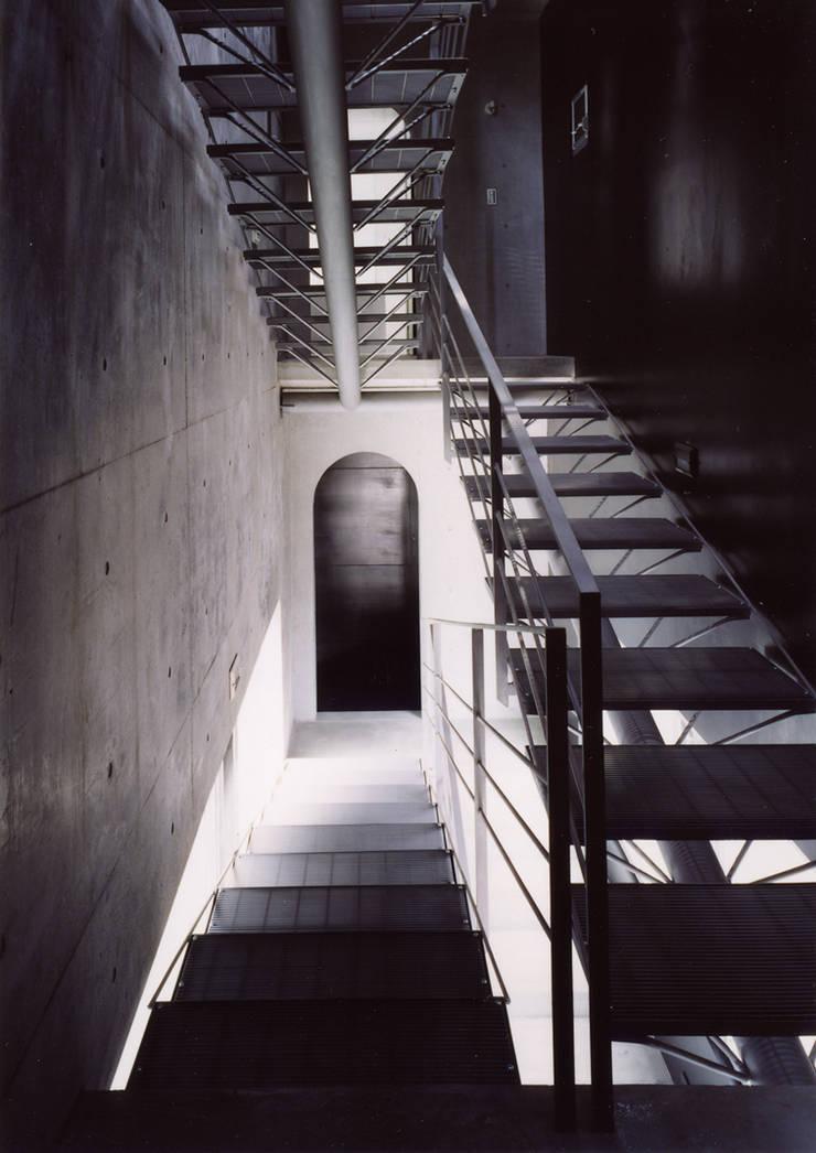 中庭を囲む3世代の家: スタジオ4設計が手掛けた廊下 & 玄関です。
