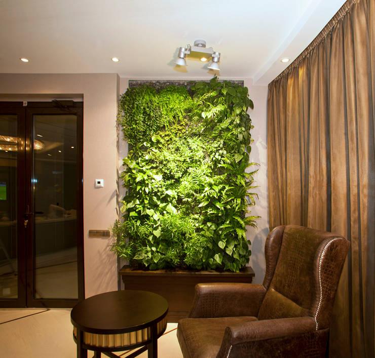 Фитостена в гостиной: Озеленение  в . Автор – RaStenia