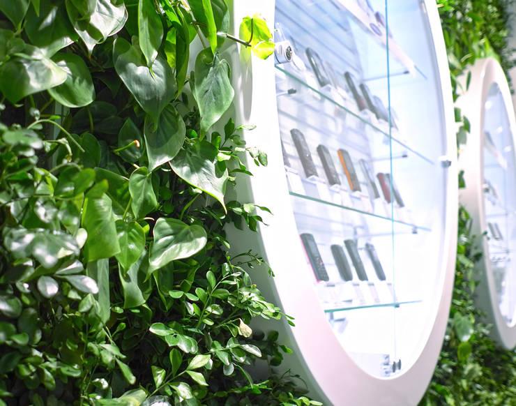Растения и технологии: Озеленение  в . Автор – RaStenia