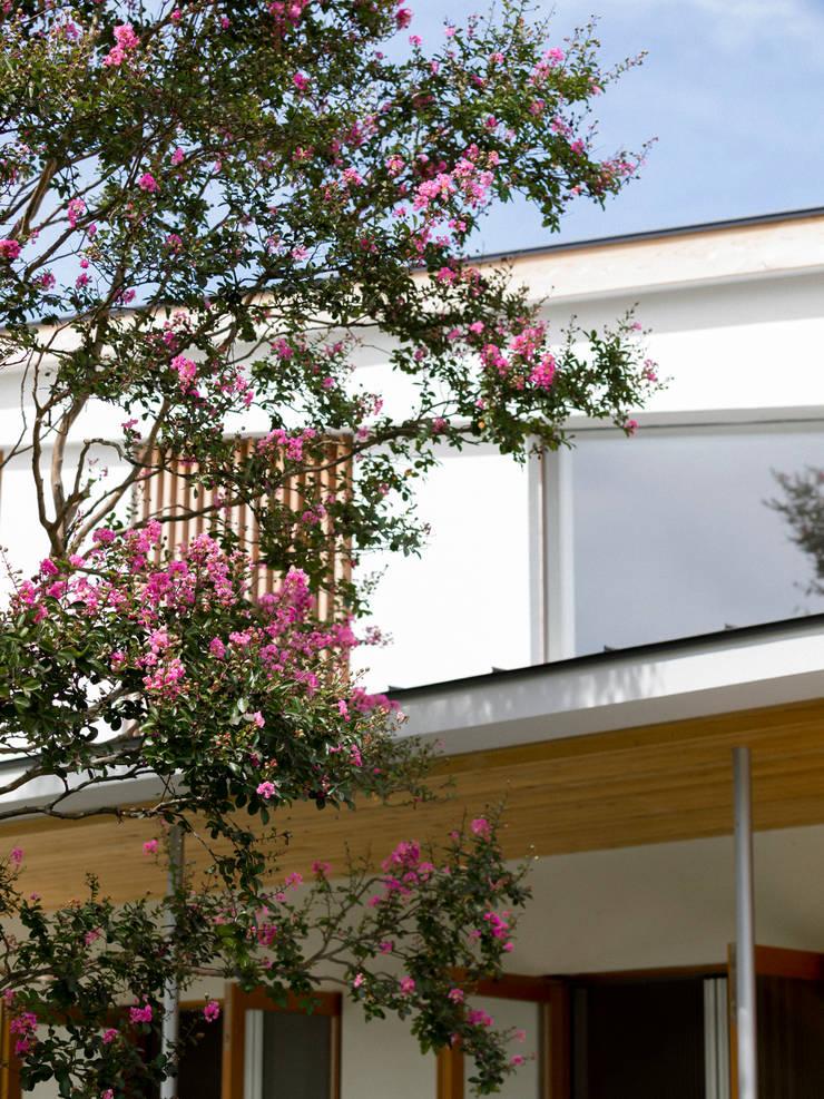 サルスベリ越しの外観: Far East Design Laboが手掛けた家です。