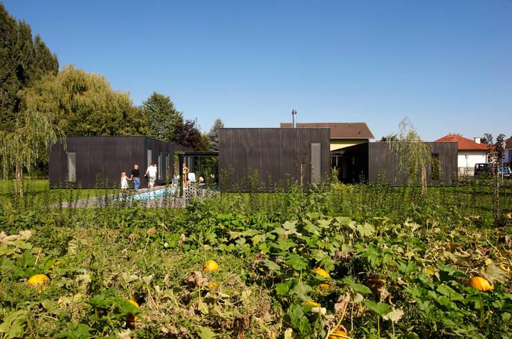 streckhof reloaded zellerndorf:  Garten von franz