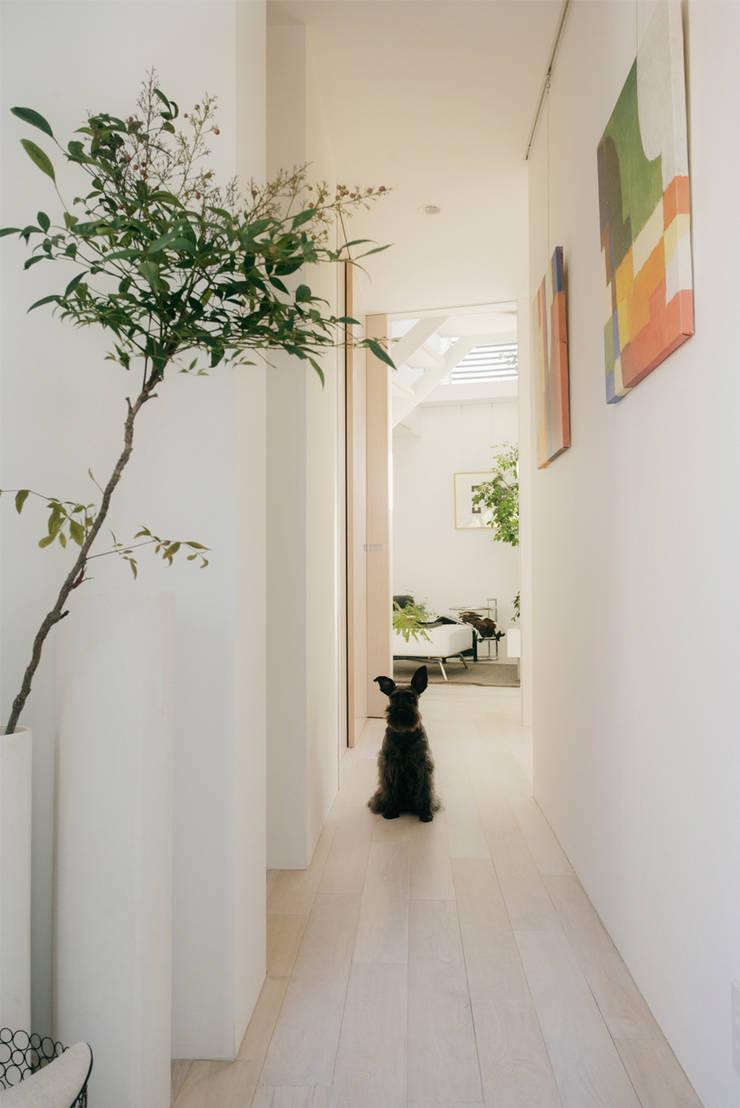 廊下: H建築スタジオが手掛けた廊下 & 玄関です。