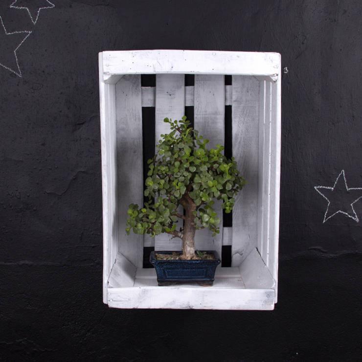 ARCE estantería cajas de fruta: Hogar de estilo  de ECOdECO Mobiliario