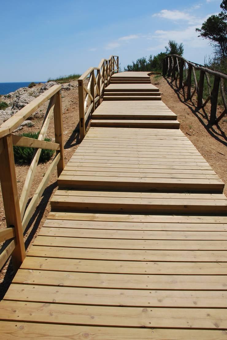 Valla , pasarelas y escaleras de madera de pino tratado. L'Escala – Empúries: Paredes de estilo  de Fitor Forestal SL