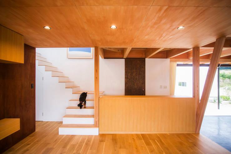 TMS: ZOYA Design Officeが手掛けた廊下 & 玄関です。