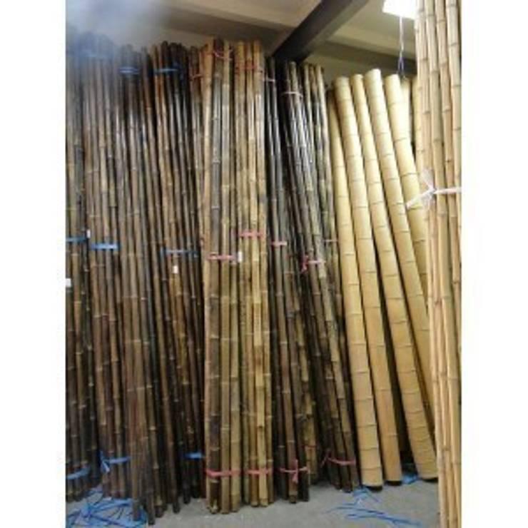 bambusy do ogrodu: styl , w kategorii Ogród zaprojektowany przez Centrum Ogrodnicze GardenPol