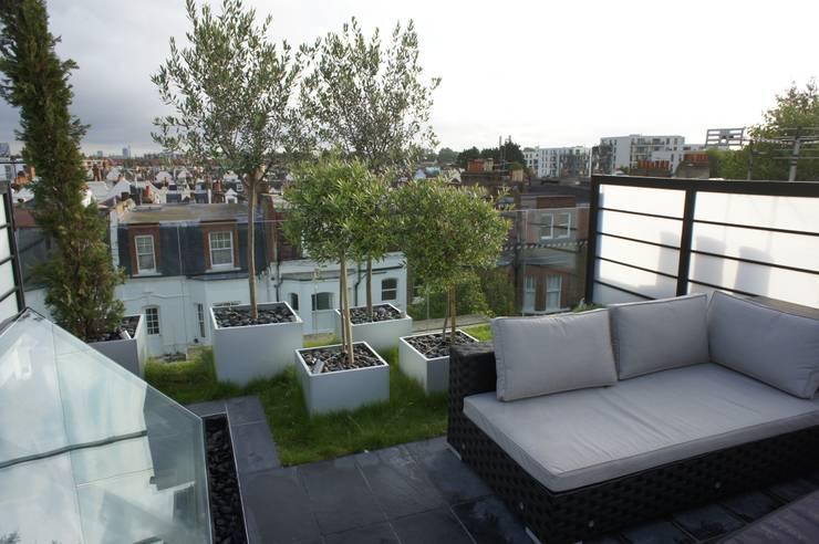 Organic Roofs:  tarz Teras