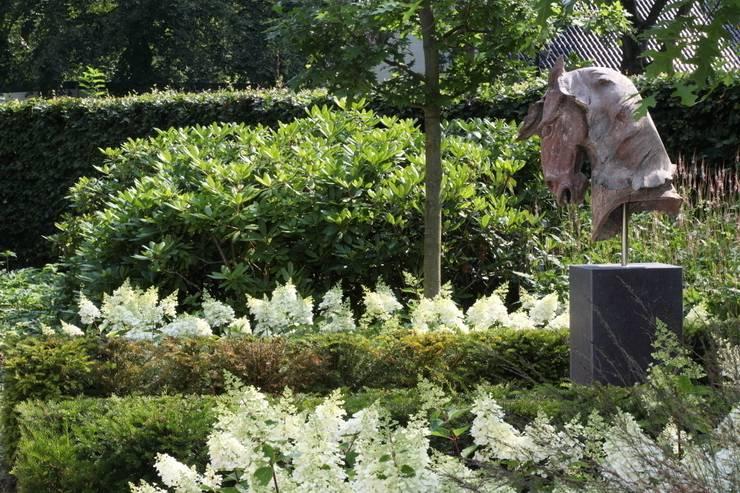 Klassiek ontmoet modern: moderne Tuin door Stoop Tuinen