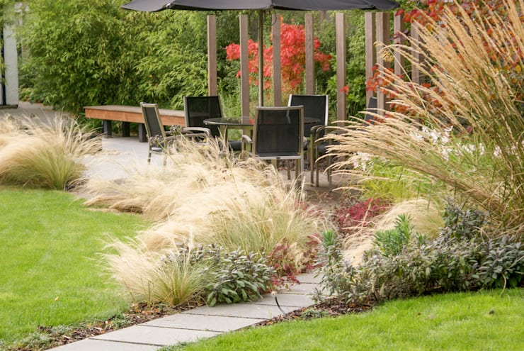 Contemporary Modern Family Garden:  Garden by Rosemary Coldstream Garden Design Limited