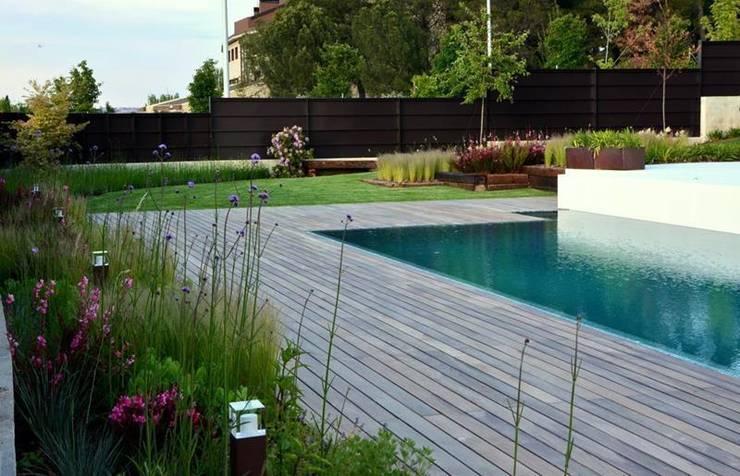Jardín Contemporaneo: Piscinas de estilo  de La Paisajista - Jardines con Alma