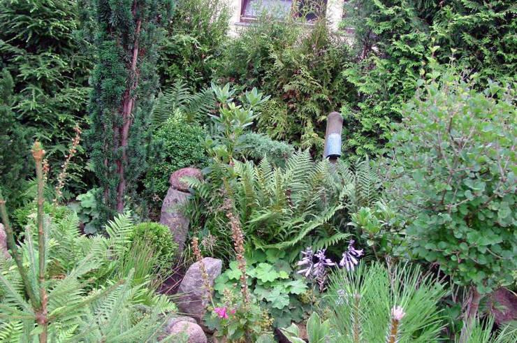 Kleiner Garten ganz Moos (Groß):  Garten von Kokeniwa Japanische Gartengestaltung
