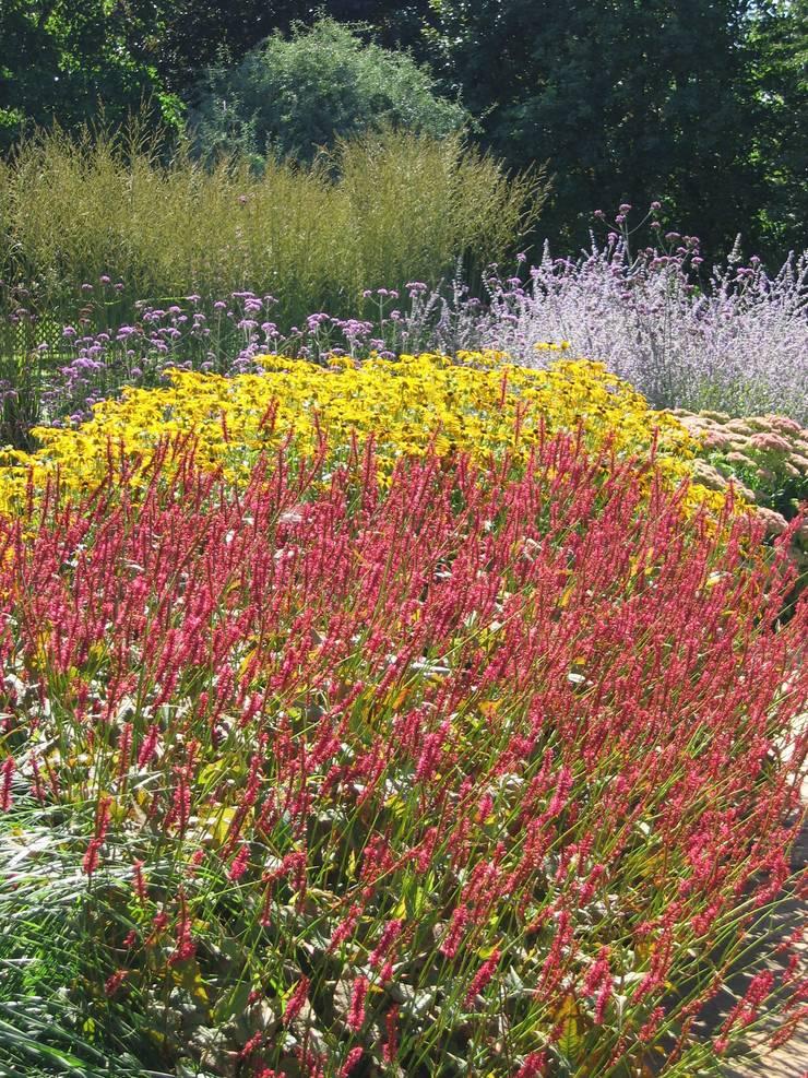 Perennial Planting:  Garden by Paul Dracott Garden Design