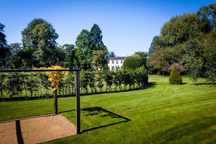 Curves, shapes and a splash of colour:  Garden by Alasdair Cameron Design