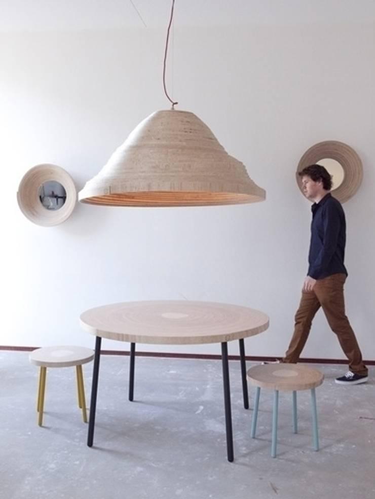 Twisted Light Inside Design IJburg:  Woonkamer door Studio Erwin Zwiers