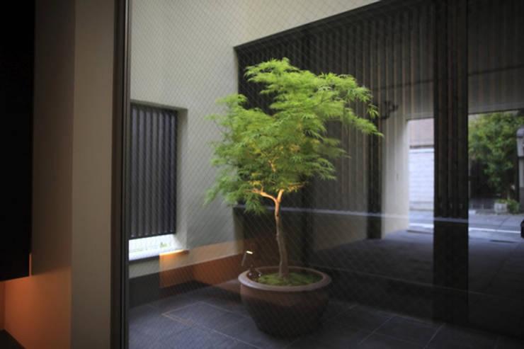 h i k a r i n i w a 玄関から光庭を見る: アーキシップス古前建築設計事務所が手掛けた庭です。