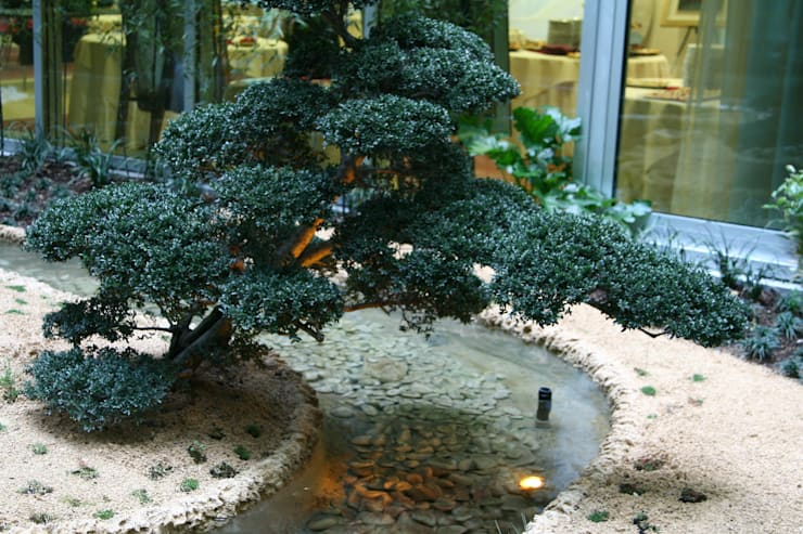 HOTEL K: Giardino in stile  di Giuseppe Maria Padoan bioarchitetto - casarmonia progetti e servizi
