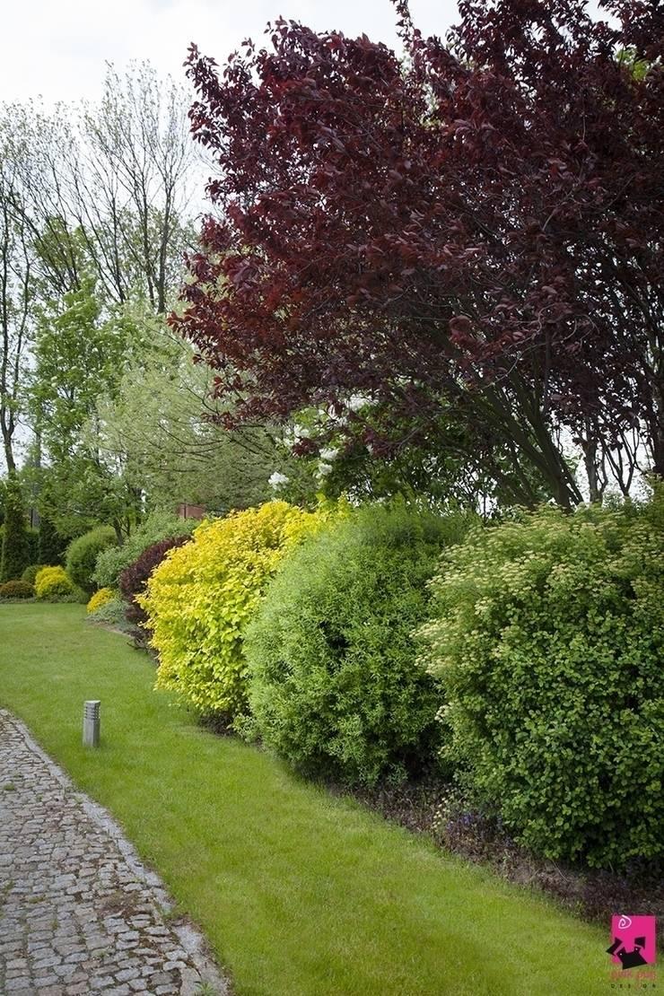 Ogród w okolicach Skierniewic – 3,5 tys. m2: styl , w kategorii Ogród zaprojektowany przez Pink Pug Design Interior