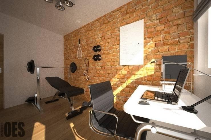 Projekt mieszkania Sosnowiec: styl , w kategorii Domowe biuro i gabinet zaprojektowany przez OES architekci