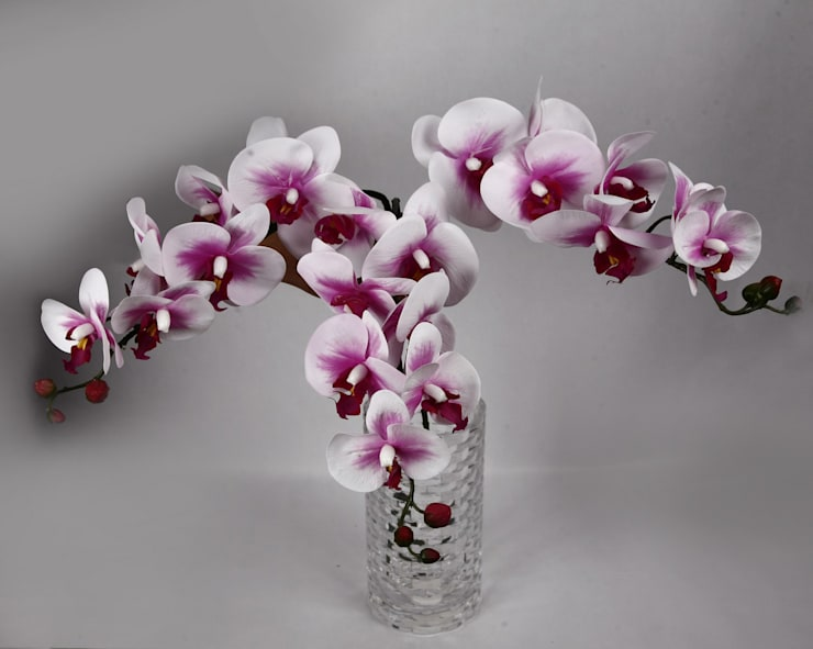Flowers—Orchids and Lily:  Living room by Uberlyfe