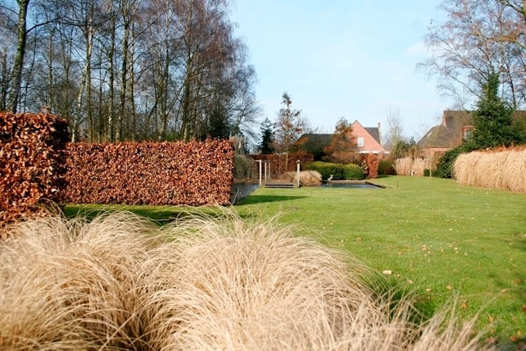 Landscape garden with ponds for koi/ Landschappelijke tuin met vijvers voor koi. :  Garden by FLORERA , design and realisation gardens and other outdoor spaces.