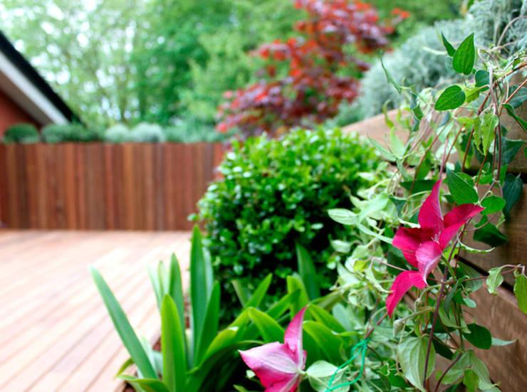 Terraza en Donosti: Terrazas de estilo  de La Habitación Verde