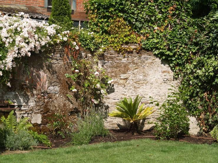 jardin Nantes - palmier lavandes perovskia: Jardin de style  par SO GREEN