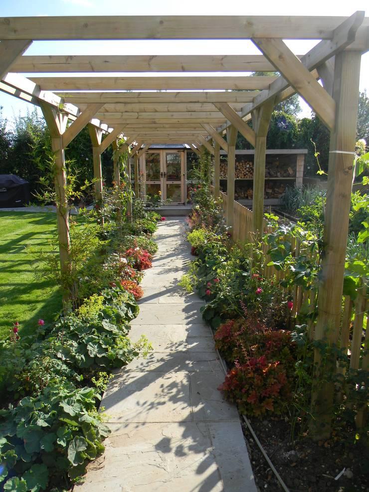 Softwood pergola.:   by Westacott Gardens