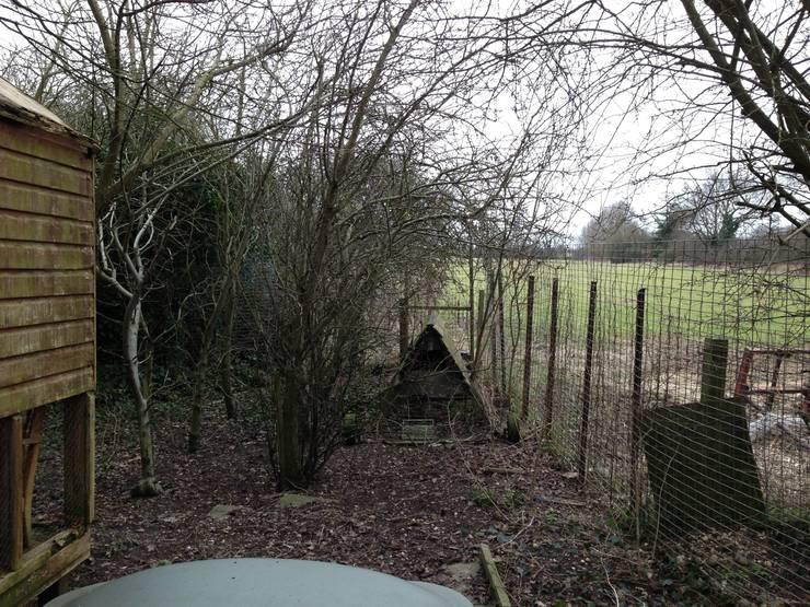 Westacott Gardens:  tarz