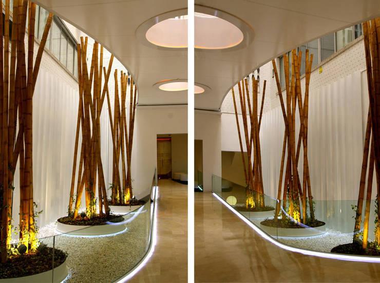 Paisajismo en oficinas – Diseño y decoración del acceso: Edificios de oficinas de estilo  de La Habitación Verde