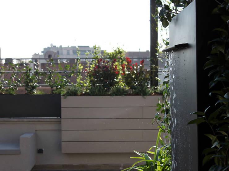 Terraza en Madrid con Pérgola: Terrazas de estilo  de La Habitación Verde