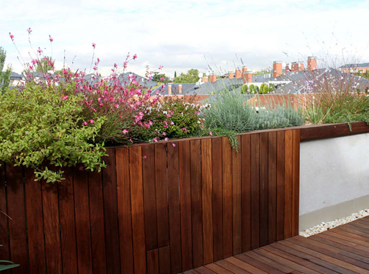 Balcone, Veranda & Terrazzo in stile  di La Habitación Verde