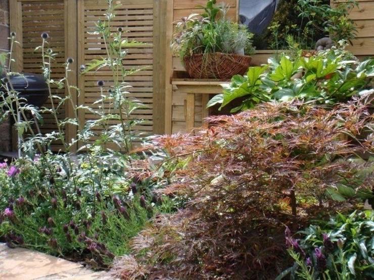 The plants:   by Anne Macfie Garden Design