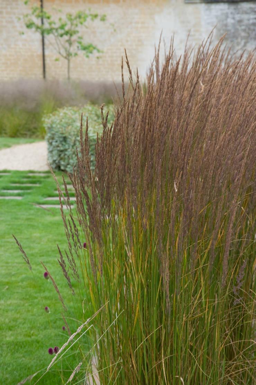 Walled Garden, Bradford Upon Avon Por Katherine Roper
