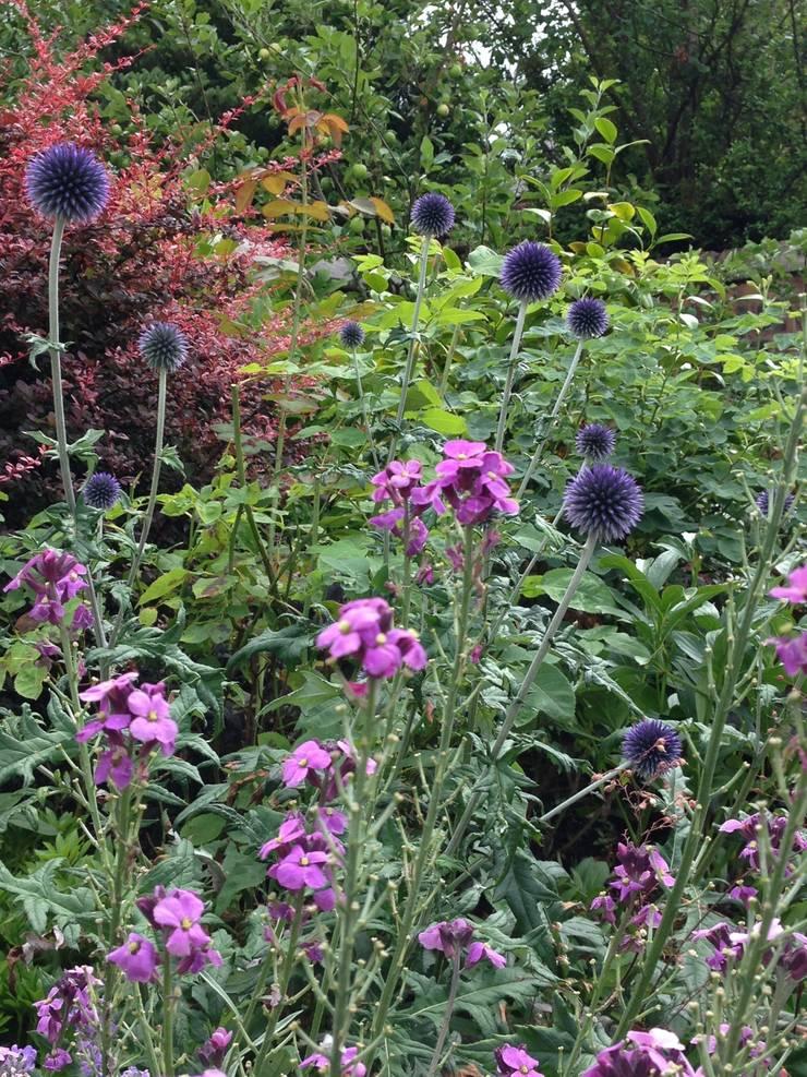 Lovely tones:  Garden by Anne Macfie Garden Design