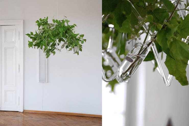 RENEVAL: styl , w kategorii Jadalnia zaprojektowany przez Agnieszka Bar Glass Design