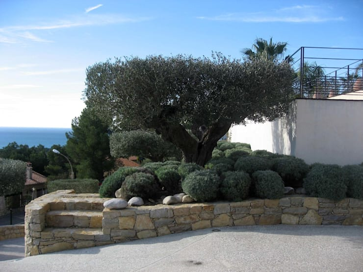 Un jardin contemporain, un balcon sur la mer: Jardin de style  par Vanessa Cottin, Méditerranéen